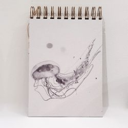 Libreta Especies Invasoras Fauna Abisal medusa blanco